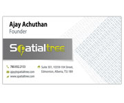 Spatial Tree Business Card
