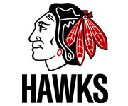 logo design and development - HAWKS Logo