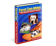 Other designs - Ferret Care Advice Book Cover